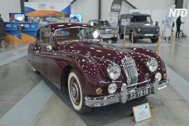 «Олдтаймер-Галерея»: на выставке в Петербурге показали авто ушедшей эпохи