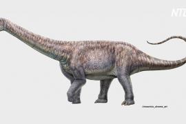 Чилийские учёные рассказали о новом виде титанозавров