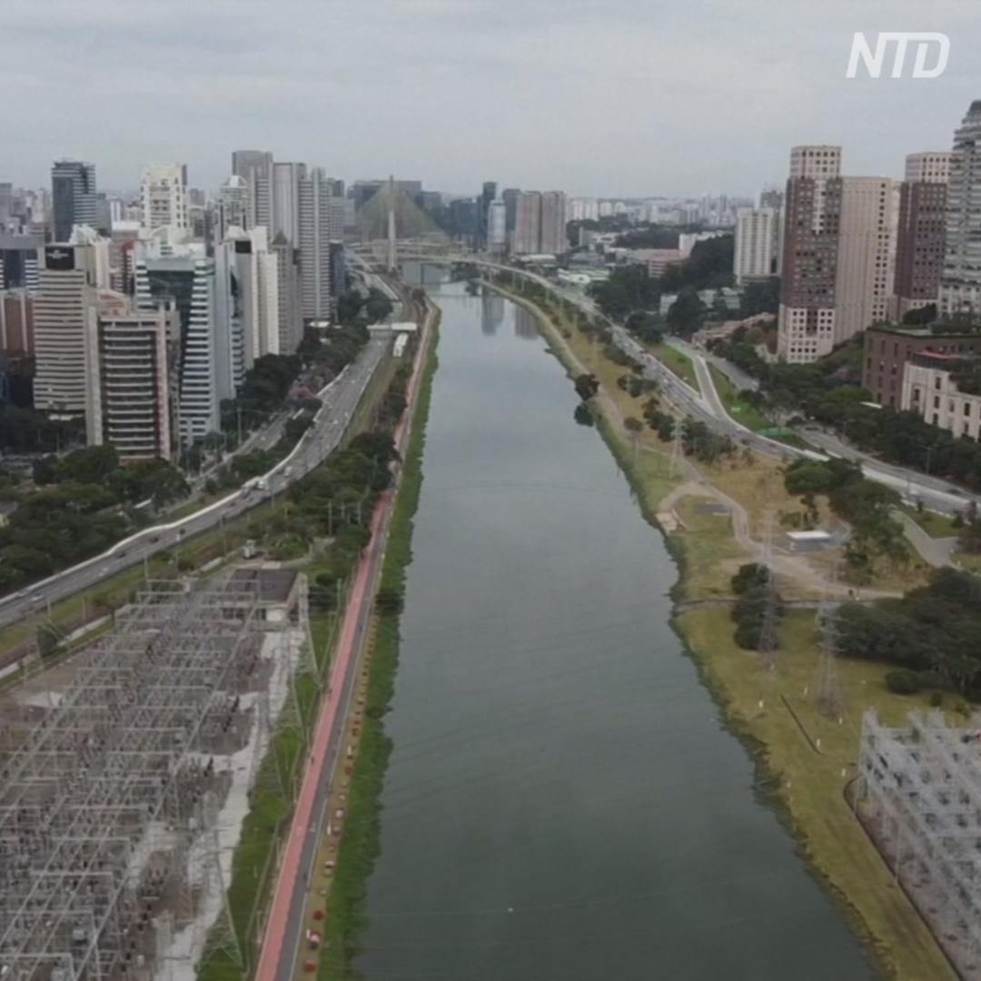 Бразильскую реку очистили, и в неё снова возвращается жизнь