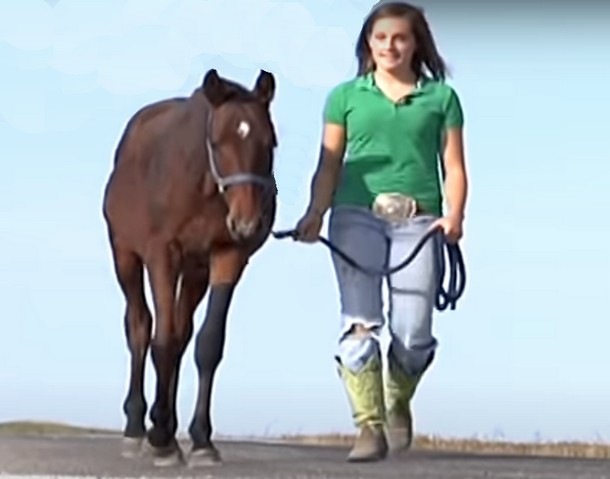 2021 05 31 181648 - Девочка прошла 14 км, чтобы спасти лошадь