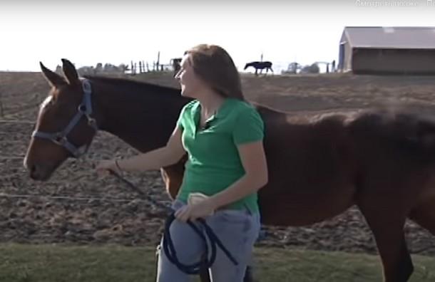 2021 05 31 182131 - Девочка прошла 14 км, чтобы спасти лошадь