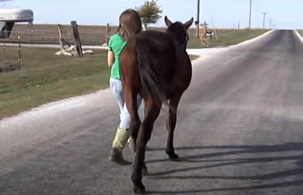 Девочка прошла 14 км, чтобы спасти лошадь