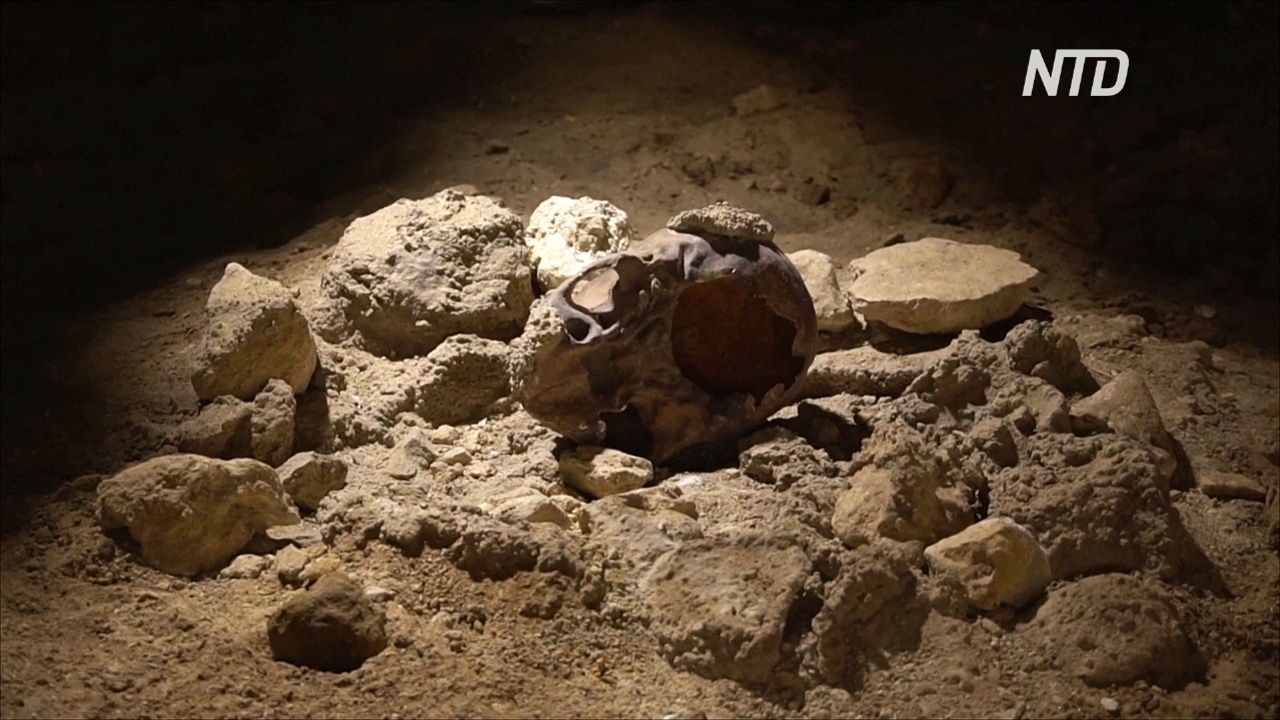 Останки девяти неандертальцев нашли в пещере недалеко от Рима