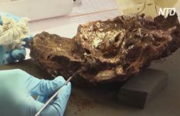 Древнейшее из найденных захоронений проливает свет на ритуалы похорон 78 тыс. лет назад