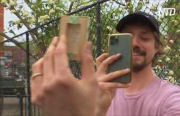 Нью-Йоркский художник прячет свои мини-картины в городе, чтобы кто-то их нашёл