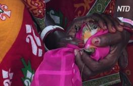 Индийские фермеры поженили лягушек, чтобы вызвать дождь