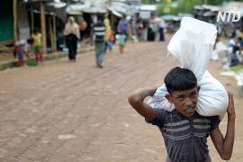 УВКБ ООН собрало на помощь рохинджа только 36% необходимой суммы