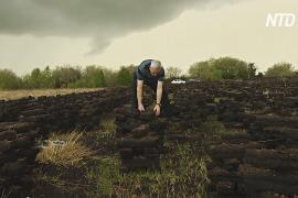 Заготовка торфа в Ирландии: можно ли спасти древнюю традицию