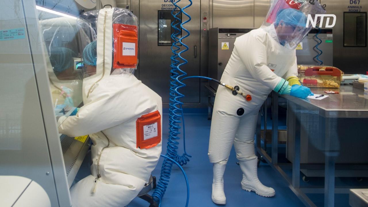 Новый отчёт: три работника лаборатории Уханя обратились в больницы ещё в ноябре 2019