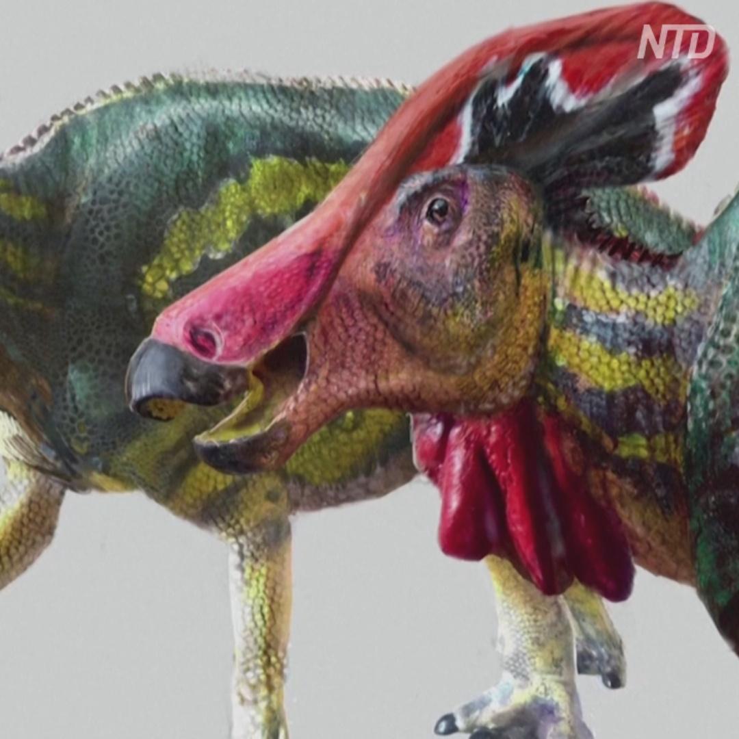 Новый вид динозавров с гребнем открыли в Мексике