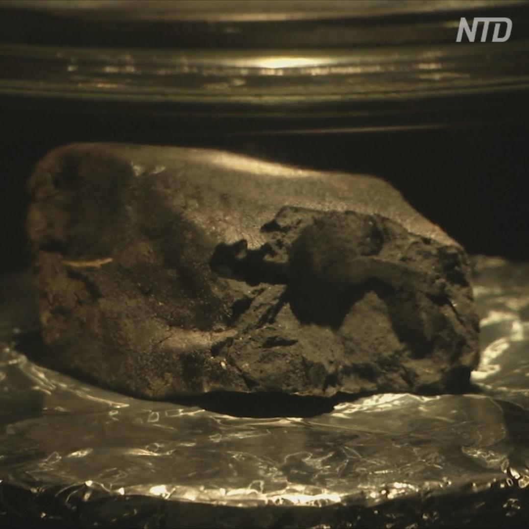 Метеорит возрастом 4,5 млрд лет станет звездой лондонского музея