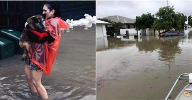 Кто помог животным, которых бросили люди во время наводнения