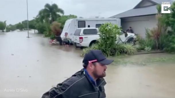 2 - Кто помог животным, которых бросили люди во время наводнения