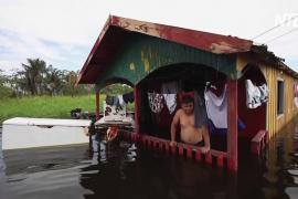 Уровень воды в притоках Амазонки бьёт 100-летние рекорды