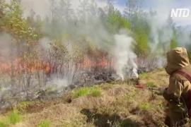 В Сибири и на Дальнем Востоке горят леса