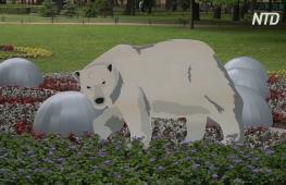 В Александровском саду в Санкт-Петербурге проходит фестиваль цветов
