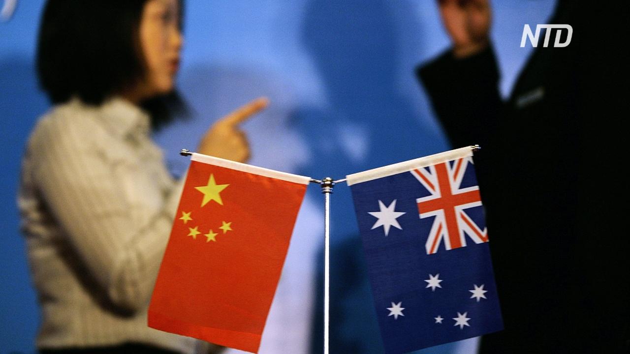 Австралия будет решать винный спор с Китаем в ВТО