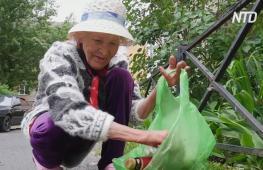 82-летняя пенсионерка вместо дворника: звезда интернета с Урала