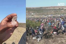 «Алмазы» оказались кварцем: как рухнули надежды искателей сокровищ в ЮАР