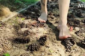 Босоногая тропа: москвичи пешком проходят 3,6 км по шишкам, брёвнам и камням