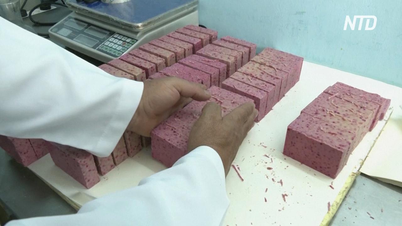 Успешная ниша: иорданка производит мыло из верблюжьего молока
