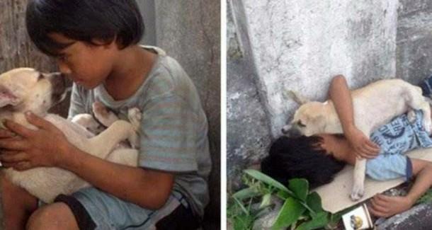 Кто стал другом для бездомного мальчика