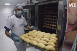 Сотни булочек: волонтёры Рио-де-Жанейро кормят жителей бедных районов
