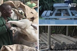 Как эколог из Уганды делает столы и заборы из пластикового мусора