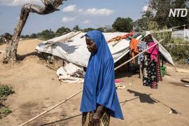 Сотни тысяч человек бегут из своих домов в Мозамбике из-за деятельности исламистов