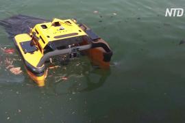 Новый робот-медуза «ест» мусор на поверхности моря