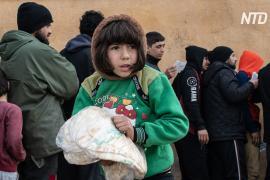 США и Россия договорились в СБ ООН о доставке гуманитарной помощи в Сирию