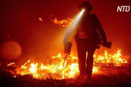 «Не уедешь – тебе конец»: в Орегоне полыхает сильнейший лесной пожар
