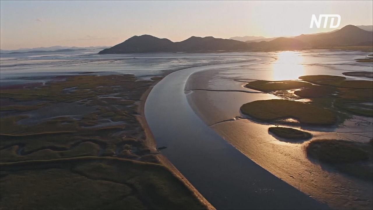 Включат ли приливные отмели Южной Кореи в список ЮНЕСКО?