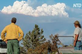 Волонтёры помогают эвакуированным из-за пожара в Орегоне