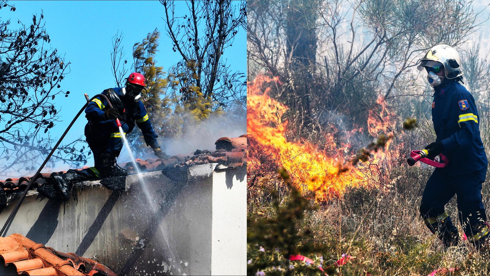 «Это сложный пожар»: под Афинами спасают от огня жилые дома