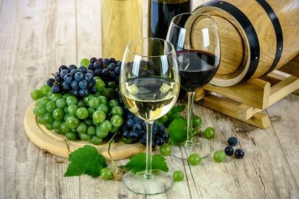 Эксклюзивные вина со всего мира