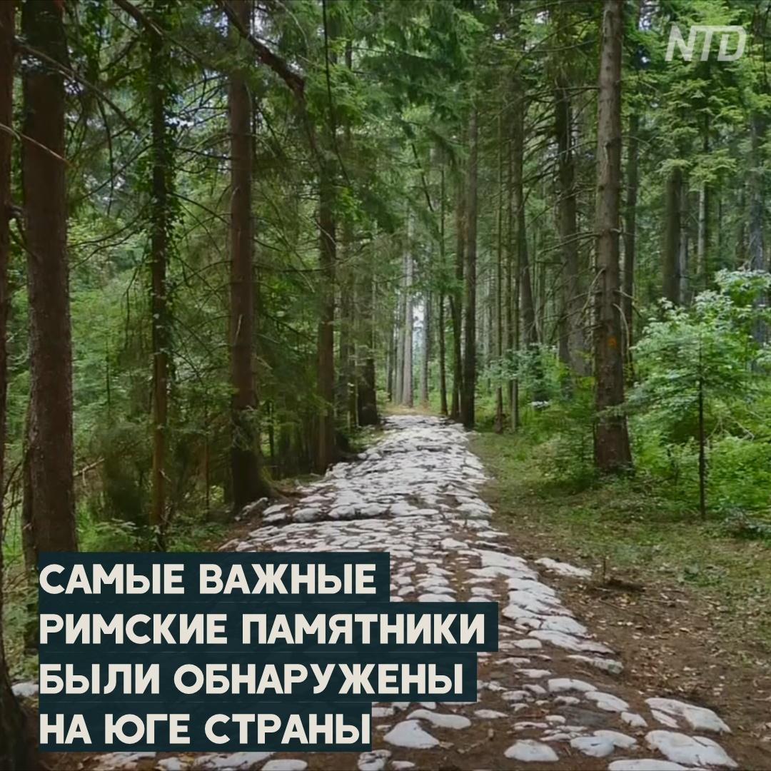 Дорогу римлян нашли в лесных зарослях Боснии