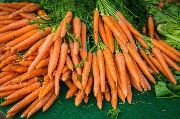 13 2 - Морковь: польза и вред