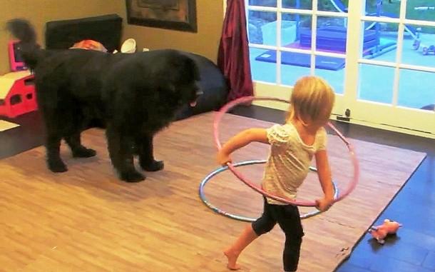 2 5 - Может ли ребёнок научить собаку крутить обруч? Весёлое видео