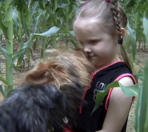 2021 08 25 155727 - Собака 12 часов охраняла потерявшуюся малышку