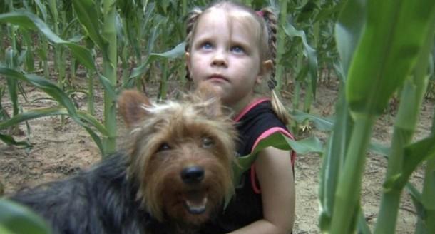 Собака 12 часов охраняла потерявшуюся малышку