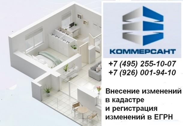 Компания «Коммерсант»: внесение изменений в кадастр или ЕГРН