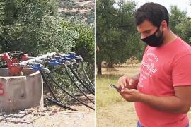 Экономит воду и время: на Крите разработали «умную» систему орошения