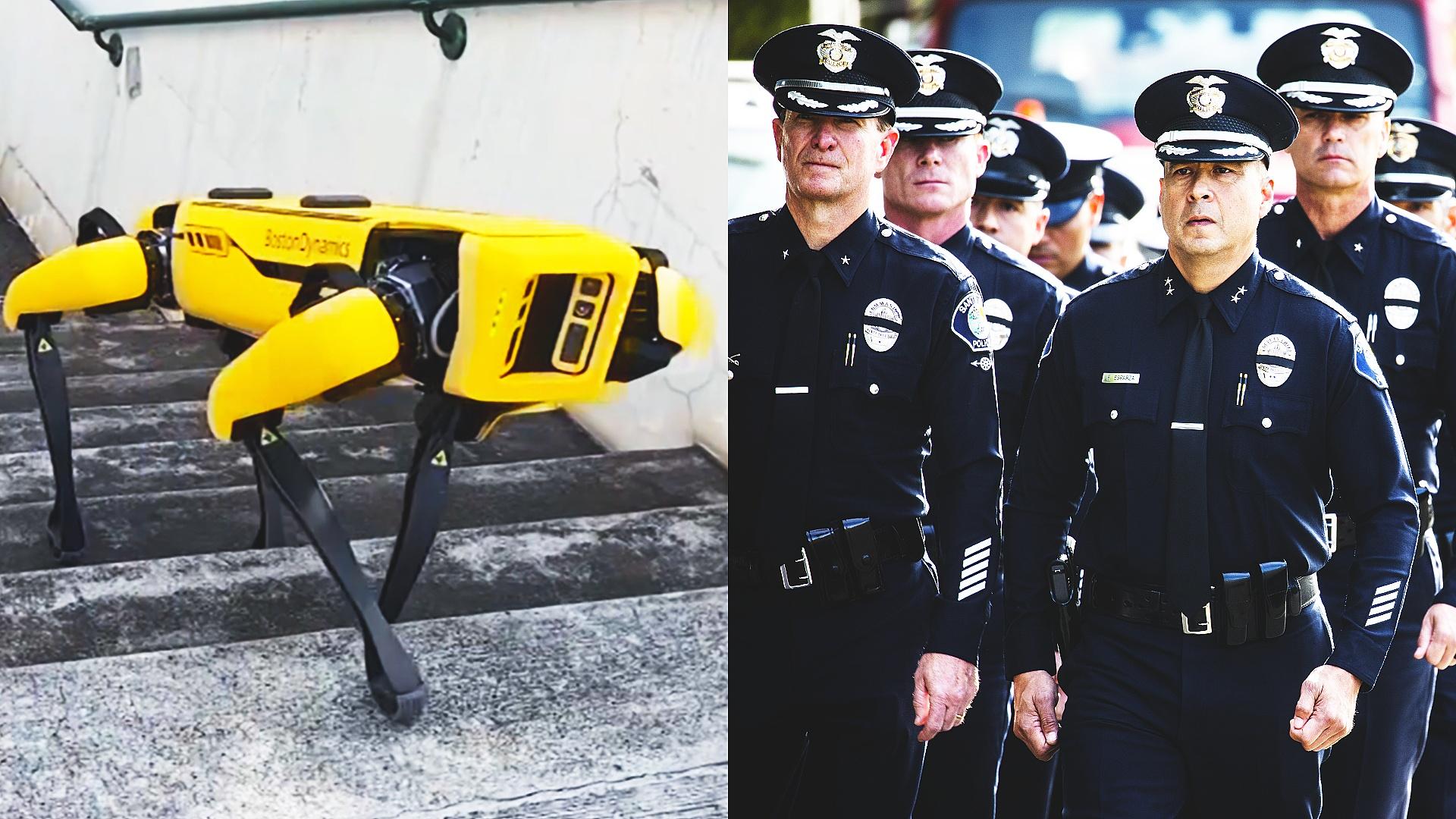 Робопсы поступили на службу в полицию Гавайев