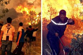 «Мы устали»: алжирцы тушат пожары голыми руками