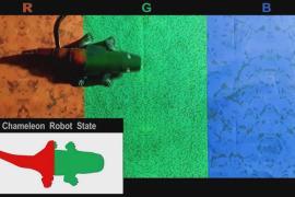 Робот-хамелеон поможет усовершенствовать технологию активного камуфляжа