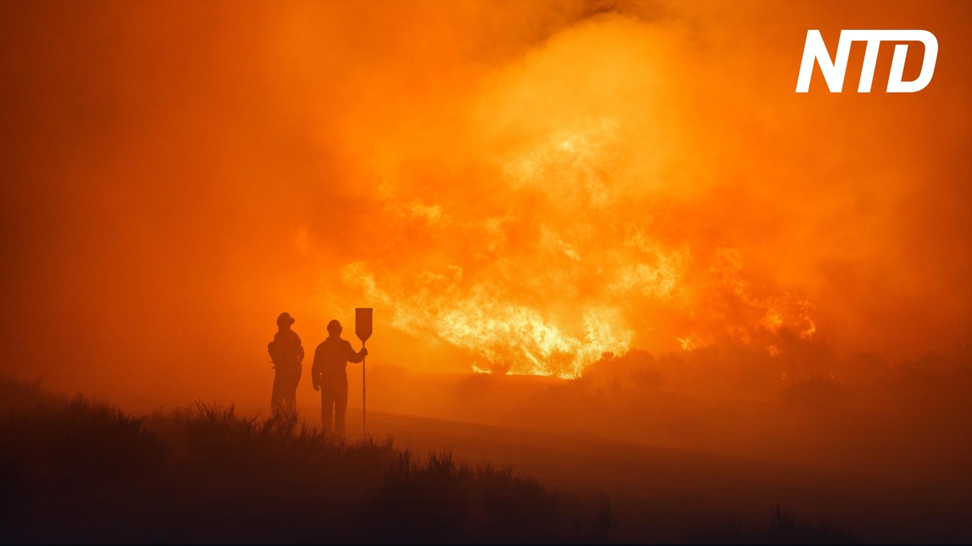 Испания пытается сдержать крупнейший в этом году пожар