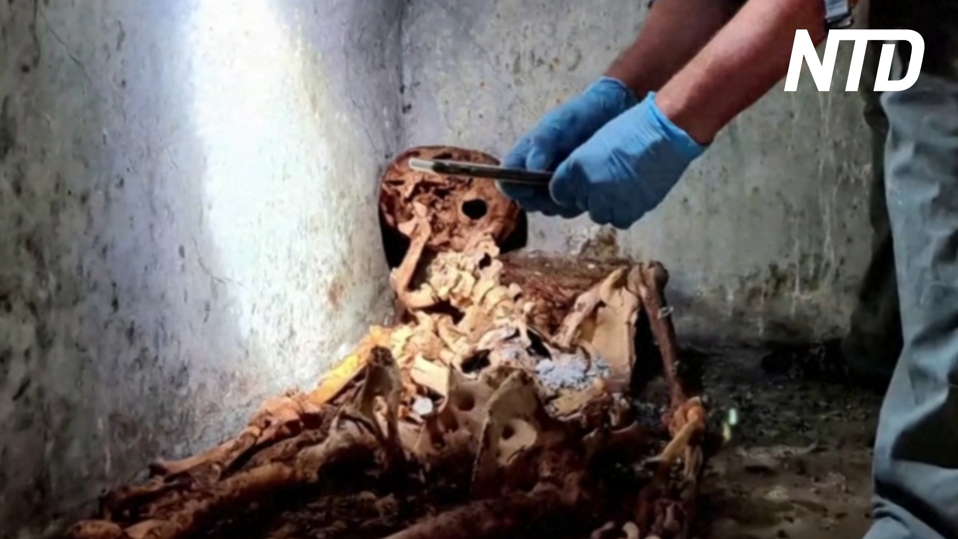 Древние останки бывшего раба раскроют тайны жизни Помпеев