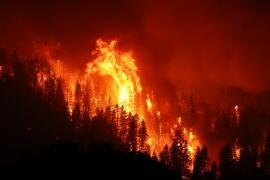 Два крупнейших пожара в Калифорнии сдержать пока не удаётся