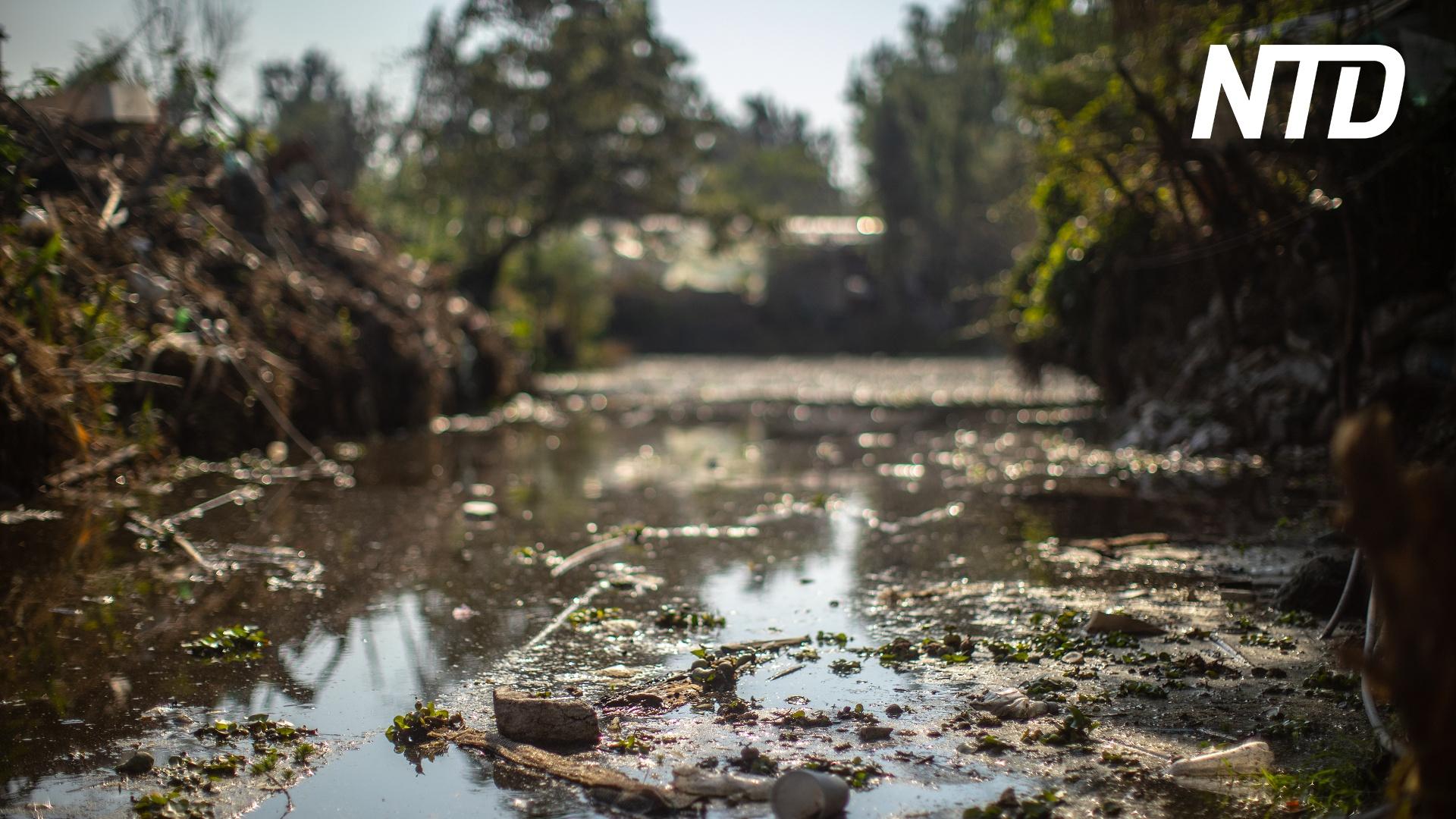 Каналы Сочимилько в Мехико очищают пузырьками воздуха